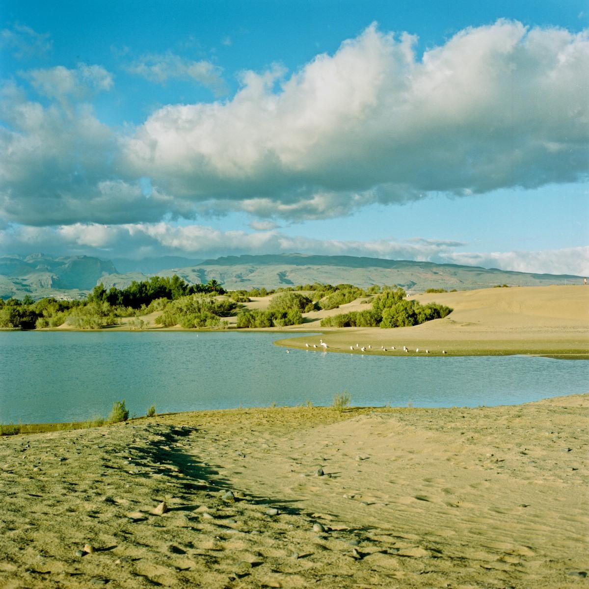 Islas Canarias 2012